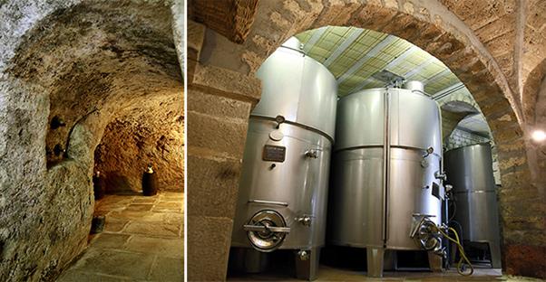 wine tour abruzzo