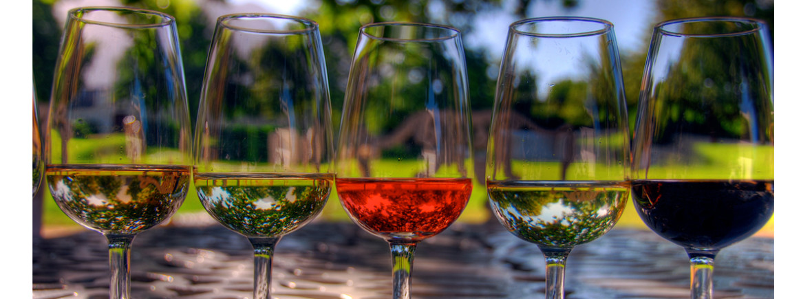 wine tasting abruzzo